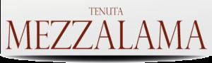 Banner-Mezzalama