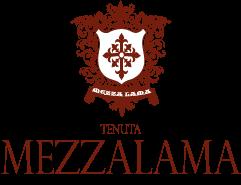 Logo-Mezzalama